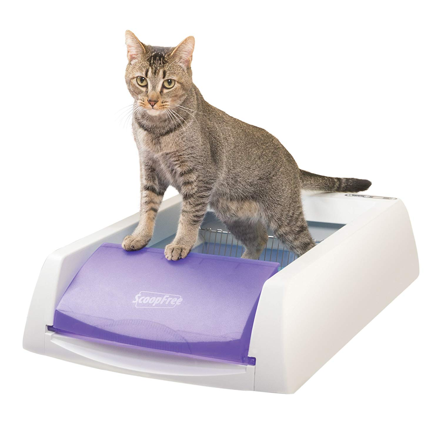 PetSafe ScoopFree Original Self-Cleaning Litter Box