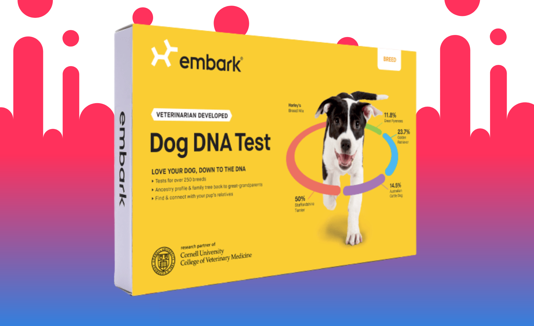 Best Dna Test Kits 2021 Which One Is Right For You Or Your Pet