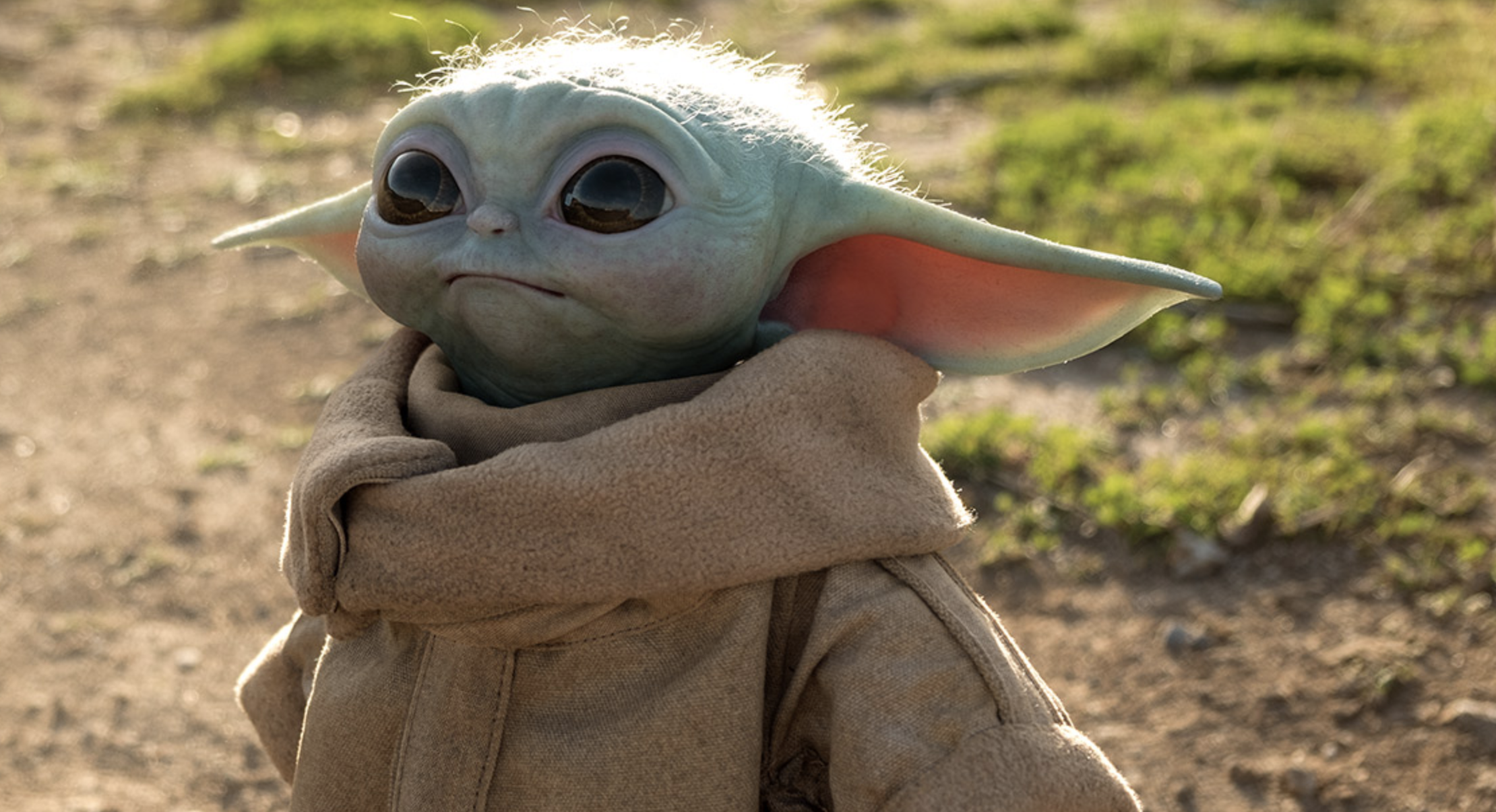 This 350 Baby Yoda Will Not Love You Back