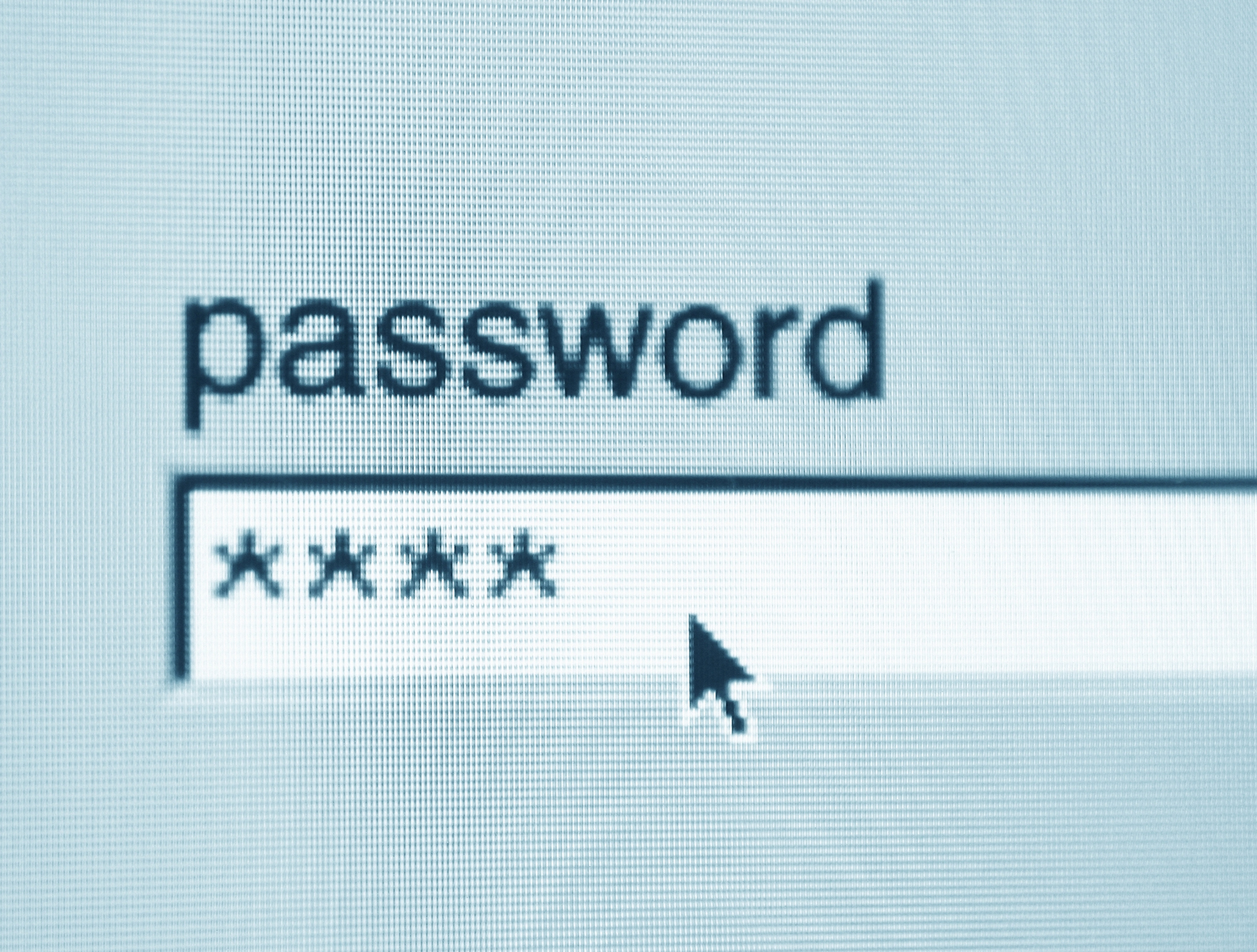 123456 Donald And Other Terrible Passwords People Used This Year