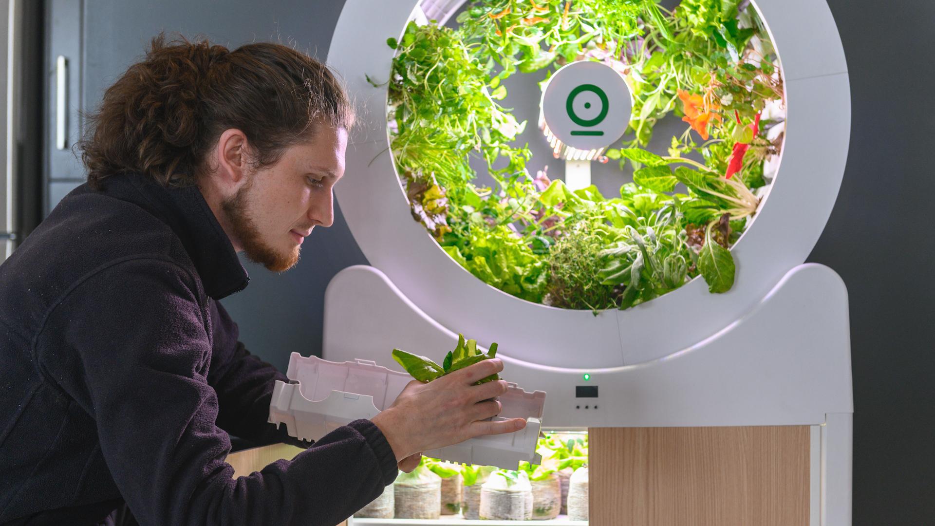 Smart Indoor Garden Ogarden Grows 90 Fruits And Veggies At Once