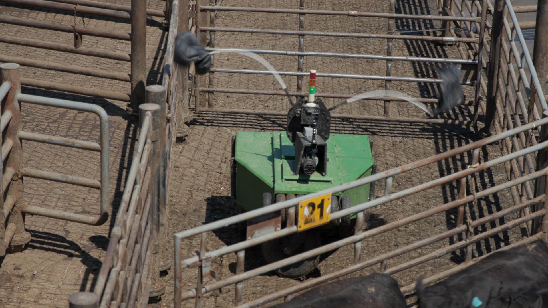 Https Video Worlds Highest Dunk Blueprint Api Cut Engineer Safety Boots Iron Fosil Leather Coklat 98afcd36 06f6 4da0 A75d E591ad6a2a75
